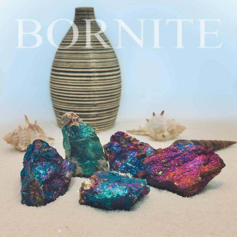 """Pfauenerz in Sand mit Muscheln und Vase mit Beschriftung """"BORNITE"""""""